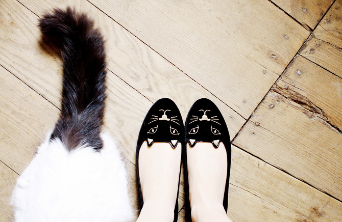 DIY InspirationAnimal Flats « M J Blog