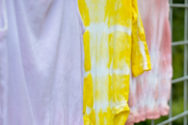 Playful Learning All Natural Dye