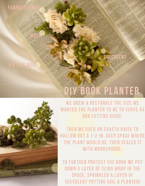 Book Planter from Wednesday Custom Design