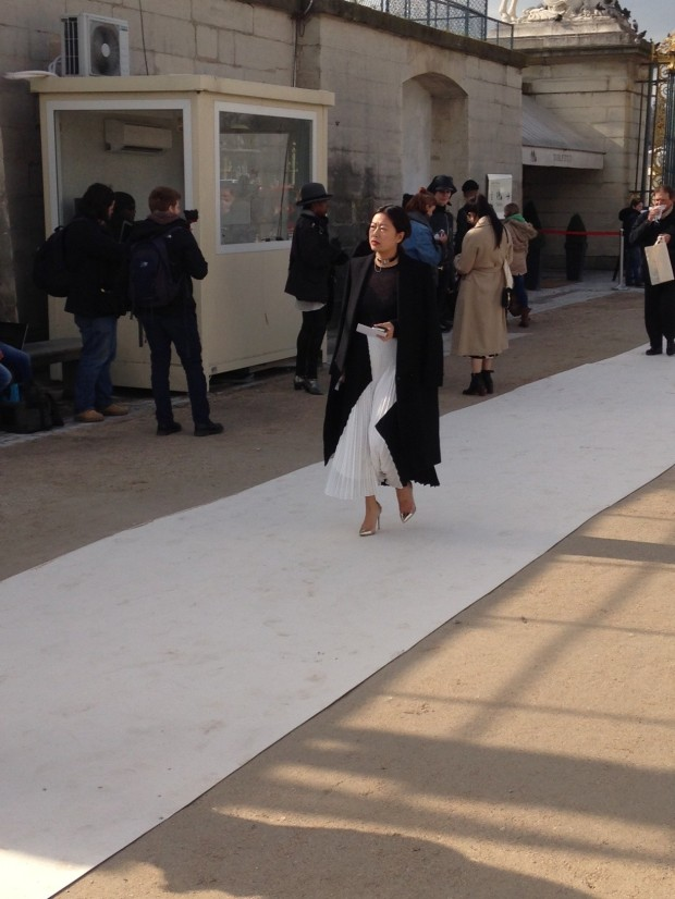 White Pleated Skirt at PFW