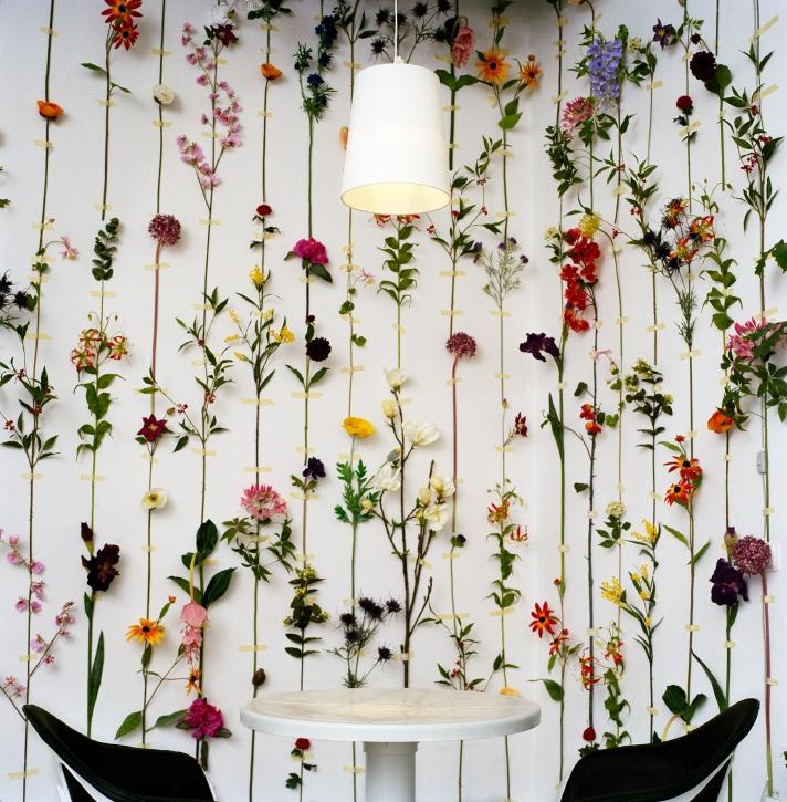 tensta_flower_wallpaper